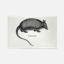 Nine-Banded Armadillo Rectangle Magnet