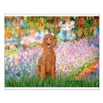 Garden/Std Poodle (apricot) Small Poster