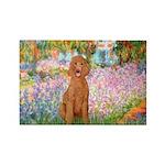 Garden/Std Poodle (apricot) Rectangle Magnet (100