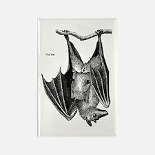 Fruit Bat Rectangle Magnet