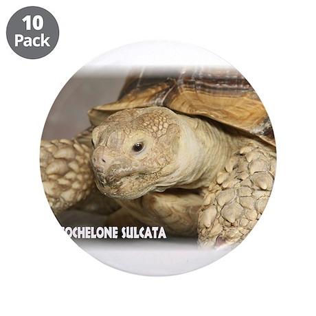 """Sulcata Tortoise 3.5"""" Button (10 pack)"""