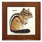 Ground Squirrel Chipmunk Framed Tile