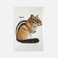 Ground Squirrel Chipmunk Rectangle Magnet