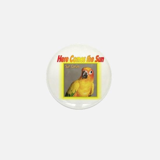 Sun Conure Mini Button