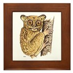 Tarsier Rain Forest Framed Tile
