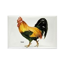 Rooster Chicken Rectangle Magnet
