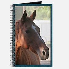 Chestnut Mare Journal
