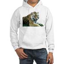 """""""Resting Tiger - B2"""" Hoodie"""