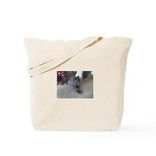 Funny British shorthair Tote Bag