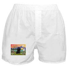 Fantasy Land Schipperke Boxer Shorts