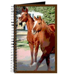 2 Loose Horses Journal