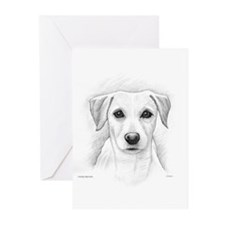 Cool Personal store Greeting Cards (Pk of 10)