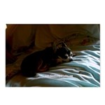 Darkside of Precious the DOG Postcards (Package of