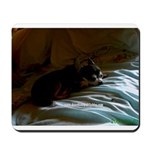 Darkside of Precious the DOG Mousepad