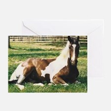 Holiday Gifts, Horse Greeting Cards, elpace