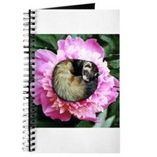Ferret in Flower Journal