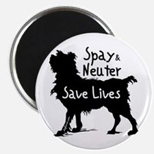 Save Lives Spay & Neuter (Dog) Magnet