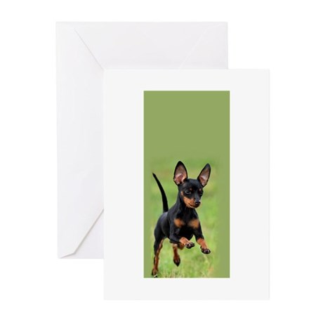 Cute Puppy Greeting Cards (Pk of 20)