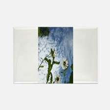 white flowers in the sky Rectangle Magnet