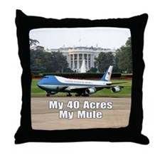 40 Acres and a Mule Throw Pillow