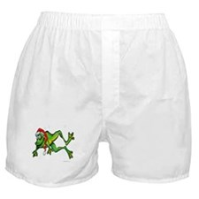 Cute Silly frogs Boxer Shorts