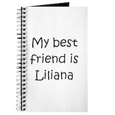 Cool Liliana Journal