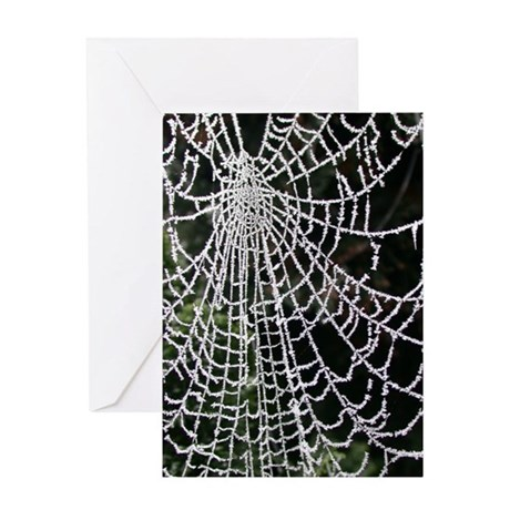 Ice-Encrusted Web Solstice Card