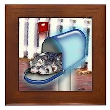 Ferrets In Mailbox Framed Tile