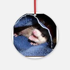 Pocket Possum Ornament (Round)