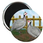 Lavender Guinea Fowl Magnet