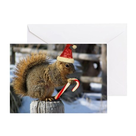 Spread Joy with Christmas Squirrel Greeting Card