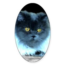 Exotic Blue Persian Cat Sticker (Oval)
