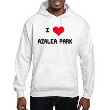 Azalea Park Love Hoodie