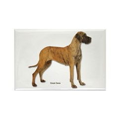 Great Dane Dog Rectangle Magnet (10 pack)
