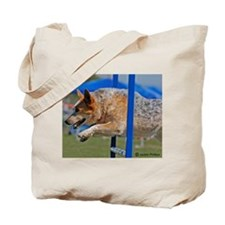Red Australian Cattle Dog Jumping in Agility Tote