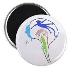 Evolved Brain MAGNET