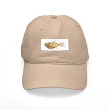 Fossil fish Baseball Cap