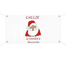 Callie Christmas Banner