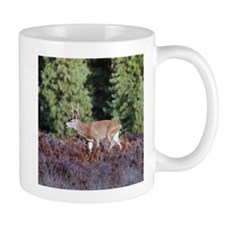 Buck in Afternoon Sunlight Mug
