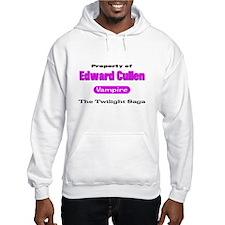 Pink Twilight Shirts Hoodie