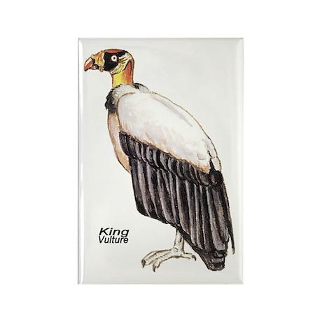 King Vulture Bird Rectangle Magnet (10 pack)