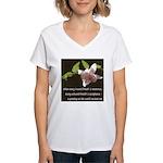 Zen Reverence Women's V-Neck T-Shirt