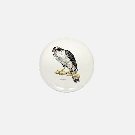 Northern Goshawk Hawk Mini Button