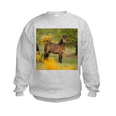 Exmoor Pony Sweatshirt