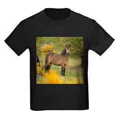 Exmoor Pony T