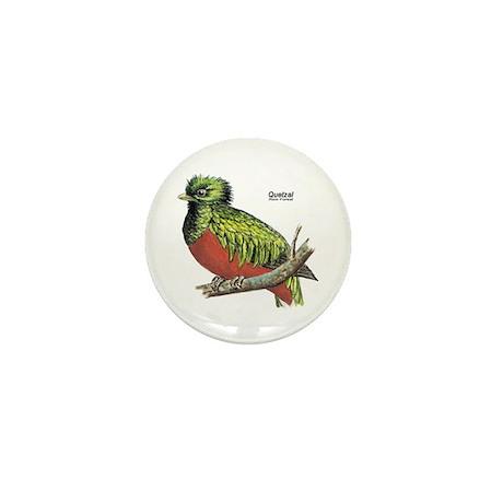 Quetzal Rain Forest Bird Mini Button (10 pack)