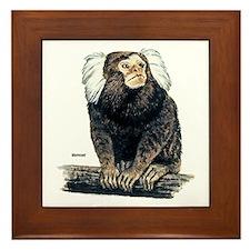 Marmoset Monkey Framed Tile