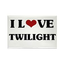 Twilight Rectangle Magnet (10 pack)