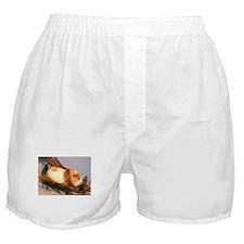 Peanut sleds! Boxer Shorts