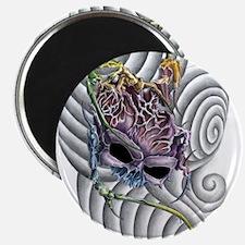 SkullBrain Magnet